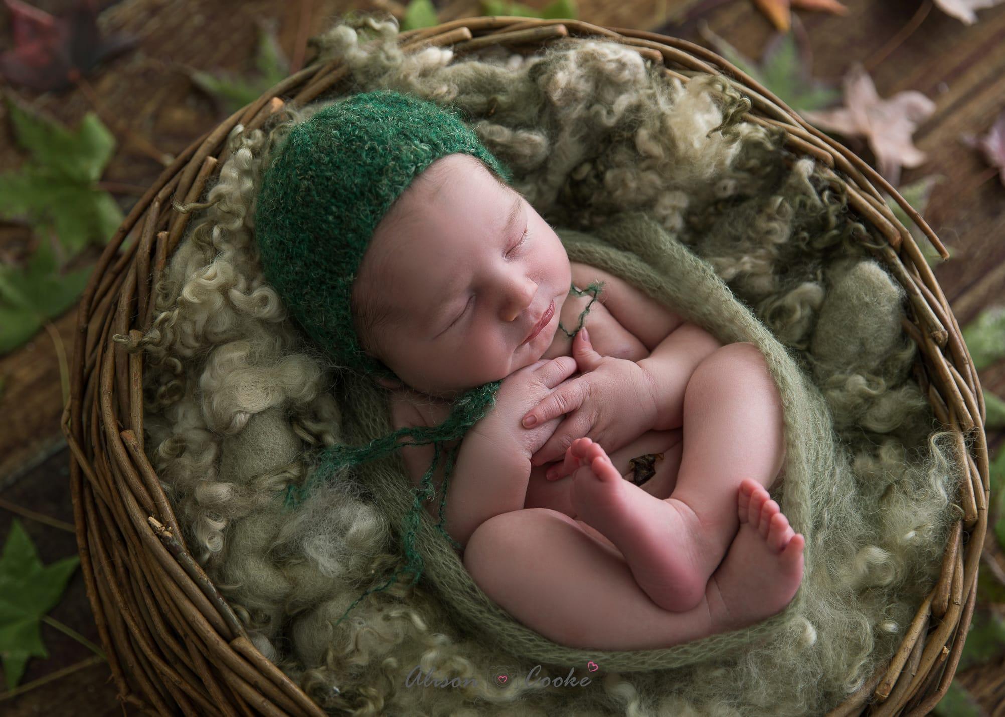newborn photography north brisbane