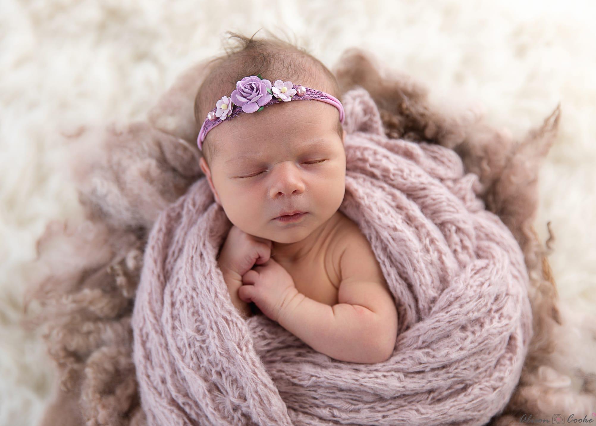Newborn photographer brisbane north archives