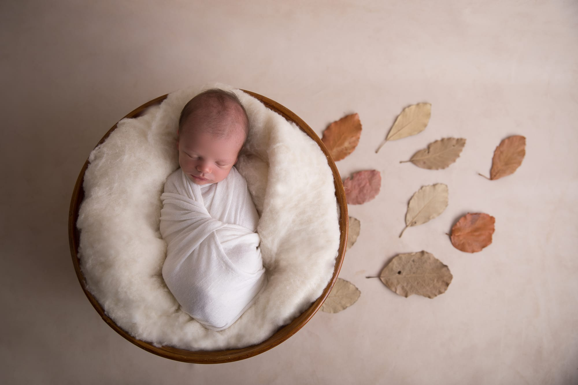 newborn photograph Brisbane
